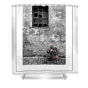 Window And Flowers Poster Shower Curtain
