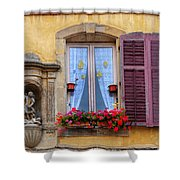 Window And Sculpture Shower Curtain
