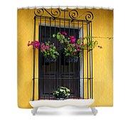 Window At Old Antigua Guatemala Shower Curtain