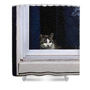 Window Cat Shower Curtain