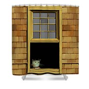 Window Cat    No.3 Shower Curtain