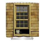Window Cat    No.4 Shower Curtain
