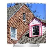 Window In Pink Shower Curtain