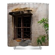 Window On Canvas Shower Curtain
