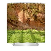 Window Reflections On Grass And Rock Face Shower Curtain