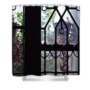 Window View 2 Shower Curtain
