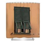 Window With Shutter Shower Curtain