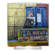 Windows And Doors Buenos Aires 17 Shower Curtain