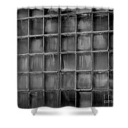 Windows Black And White 2 Shower Curtain