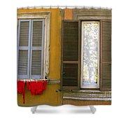 Windows  Shower Curtain