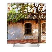 Windows Of Savannah Shower Curtain