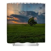Windows Sd Shower Curtain