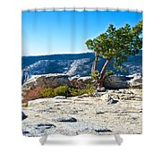 Windswept Tree On Top Of Sentinel Dome In Yosemite Np-ca Shower Curtain