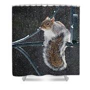 Windy Winter Day Shower Curtain