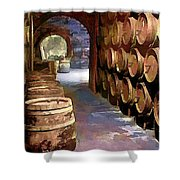 Wine Barrels In The Wine Cellar Shower Curtain by Elaine Plesser