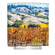 Wine Country Napa C.a. Shower Curtain