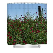 Wine Cups And Barbed Wire Shower Curtain