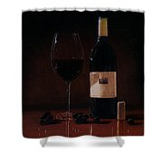 Wine Glass And Bottle Shower Curtain