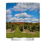Wine In Waiting Shower Curtain