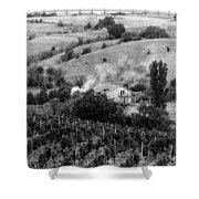 Wine Yard Shower Curtain