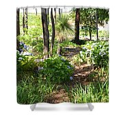 Winery Trail Shower Curtain