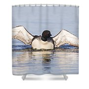Wing Beats Shower Curtain