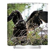 Wing Exercising Shower Curtain
