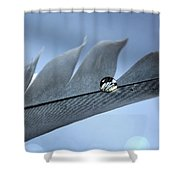 Wing Of Hope Shower Curtain