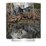 Wing Up Reflection Shower Curtain