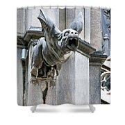Winged Gargoyle Duomo Di Milano Italia Shower Curtain