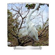Winged Grace 2 Shower Curtain