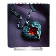 Winged Heart With Red Gem Shower Curtain