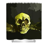 Winged Skull Shower Curtain