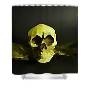 Winged Skull Two Shower Curtain