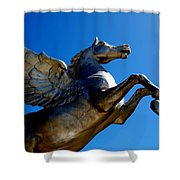Winged Wonder II Shower Curtain