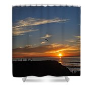 Wings Of A Bird Shower Curtain