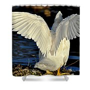 Wings Of A White Duck Shower Curtain