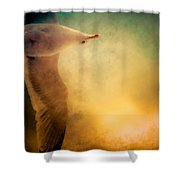 Wings Of Freedom Shower Curtain by Loriental Photography