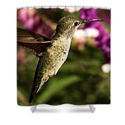 Wings Out Of The Way Shower Curtain