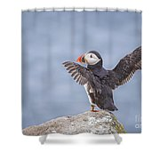 Wings To Fly  Shower Curtain