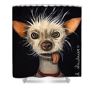 Winner Of The Ugly Dog Contest 2011 Shower Curtain