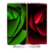 Winsome Roses Pair Shower Curtain