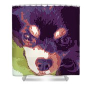 Winsome Wedgie Shower Curtain