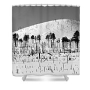 Winter After Fire-san Francisco Peaks Shower Curtain