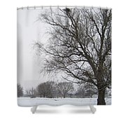 Winter Afternoon 4  2013 Shower Curtain