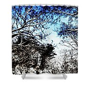 Winter Along The Bronx River Shower Curtain