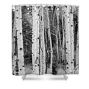 Winter Approaches Shower Curtain