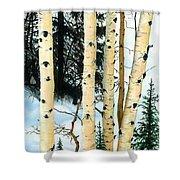 Winter Aspens Shower Curtain