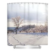 Winter At Scarborough Bluffs Shower Curtain