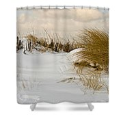 Winter At The Beach 3 Shower Curtain